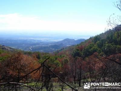 Castañar de la Sierra de San Vicente - Convento del Piélago;rutas por madrid y alrededores;ruta de